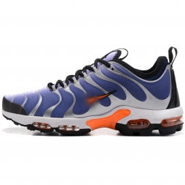 Zapatillas NK Air max TN Plus Azul y Plata