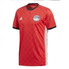 Camiseta Egipto Mundial 1ª Equipación Hombre 2017-2018