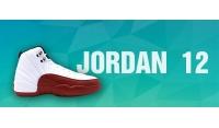 NK Air Jordan 12